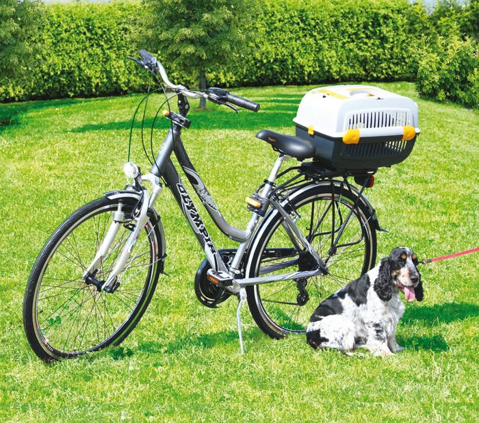 jet box hunde transportbox hundetransportbox hundebox. Black Bedroom Furniture Sets. Home Design Ideas